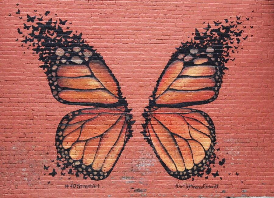 A beautiful butterfly that is painted on a brick wall in the center of downtown Springfield.